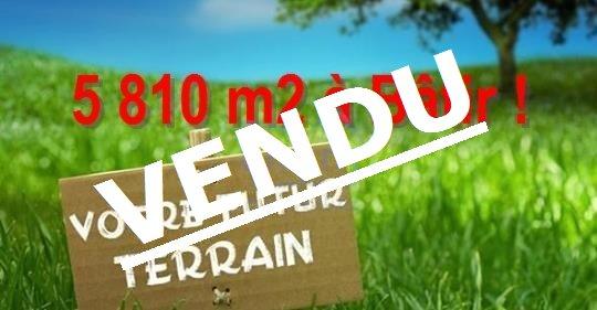 Terrain à Bâtir de 5810 m2 à Vendre à St Maurice sur Fessard